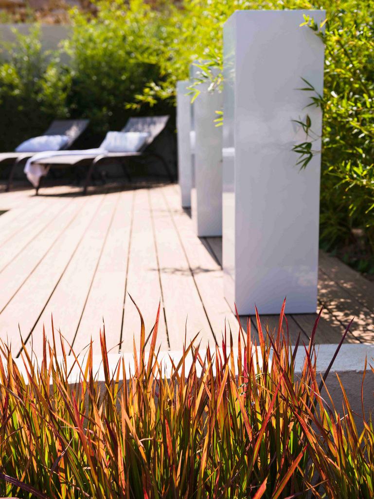 Entretien de jardin et ses végétaux par Accent du Sud