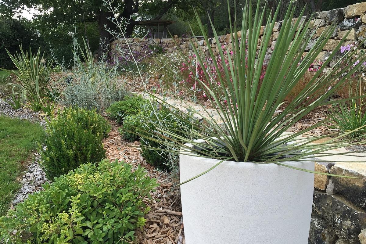 Ambiances de jardins 2