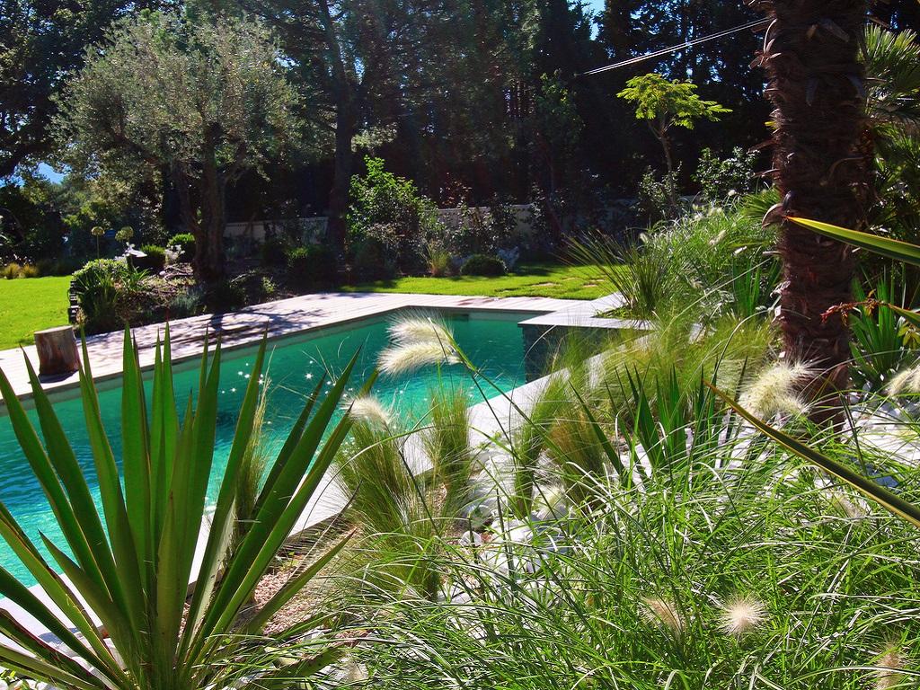 Aménagement espace vert autour d'une piscine