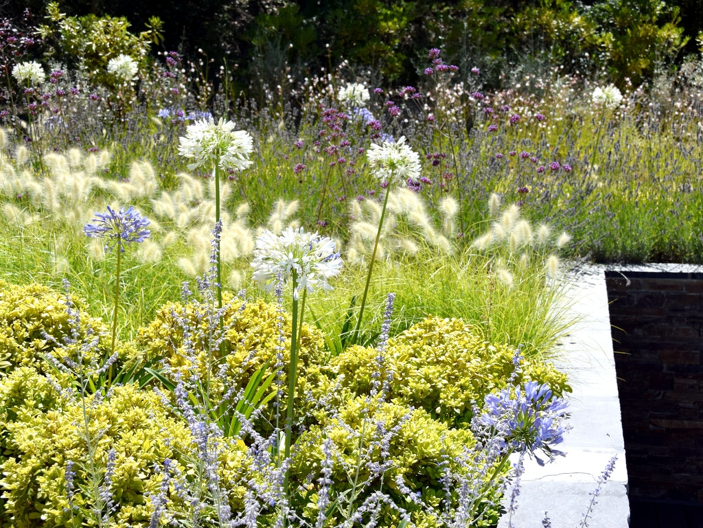 Création d'un jardin zen avec fleurs au printemps