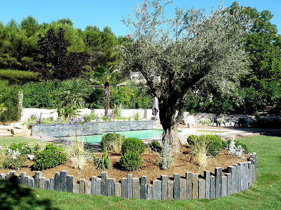 Entretien jardin vue massif et végétaux