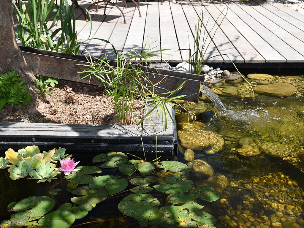 Jardin sur mesure avec bassin moderne