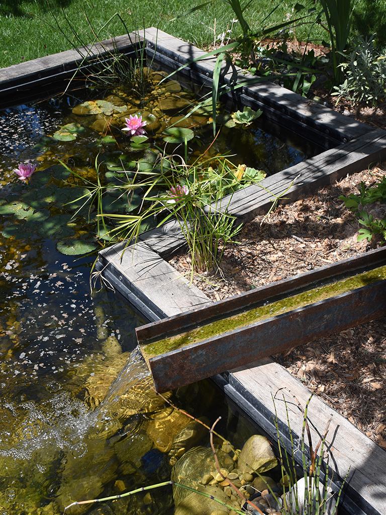 Jardin sur mesure avec un bassin et des nénuphars